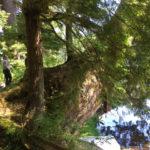 Melinda at Lac Truite