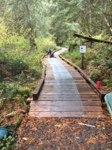 Trail work at Inland Lake